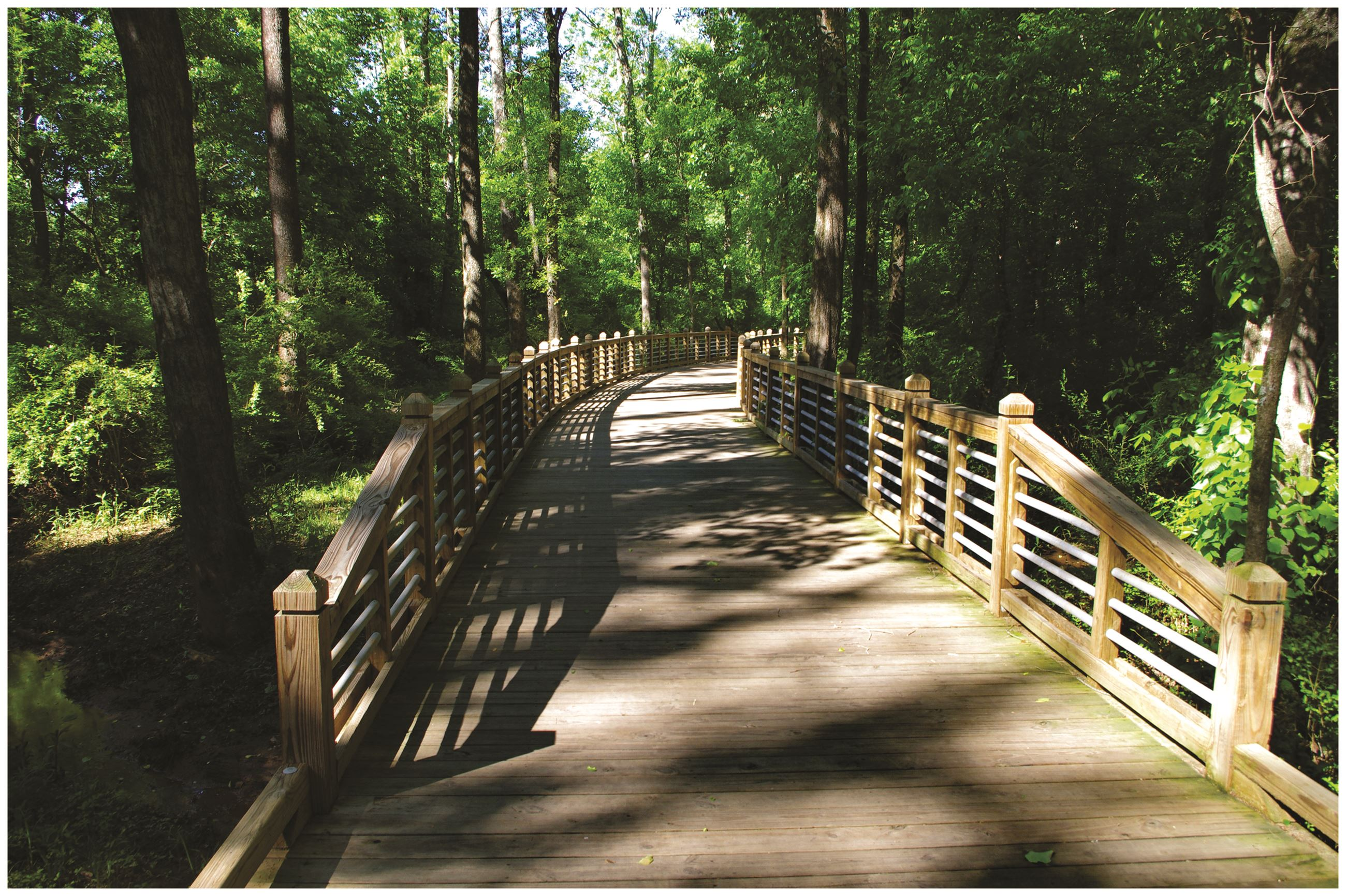 Image of Camp Creek Greenway boardwalk